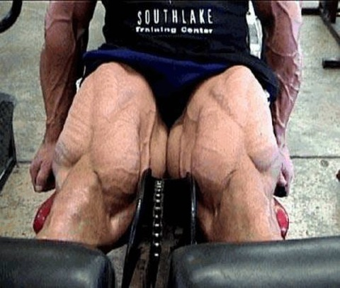 roided-out-bodybuilders-2