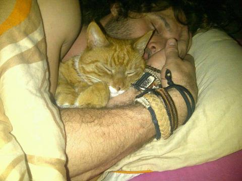cats_mans_best_friend_19