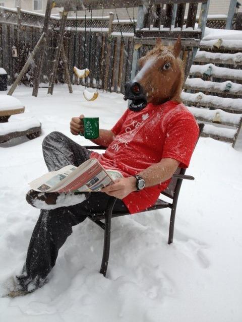 horse-mask-35