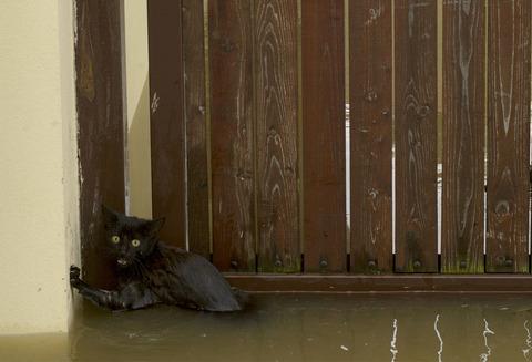 flooding091
