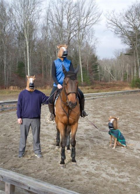 horse-mask-46