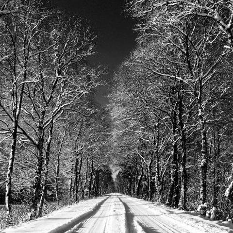 enjoy-winter-8