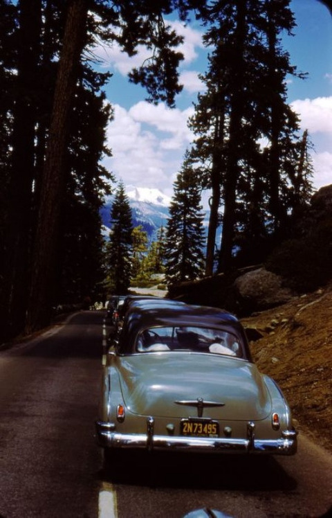 classic-cars-500-66