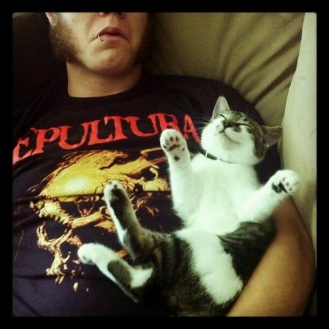 cats_mans_best_friend_8
