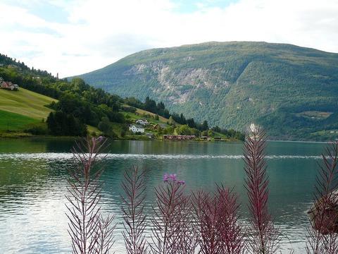 fjords43