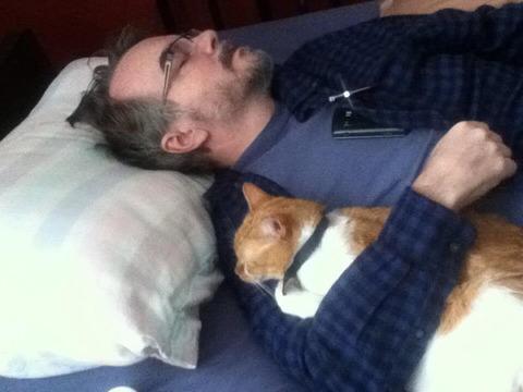 cats_mans_best_friend_4