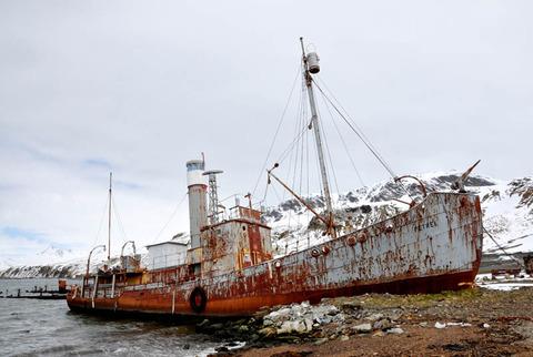 whaler-shipwreck-at-grytviken-south-georgia