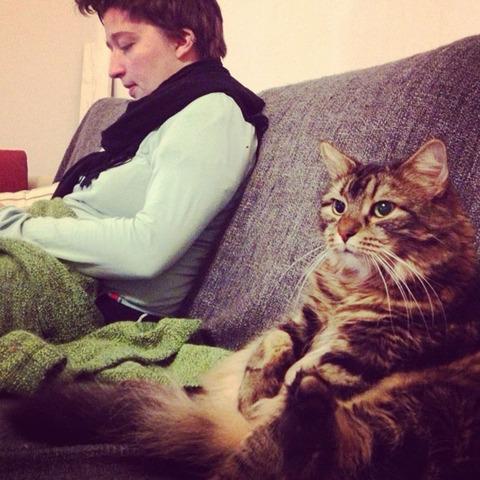 cats_mans_best_friend_11