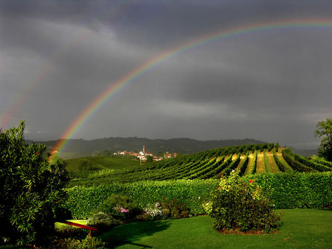 rainbows22