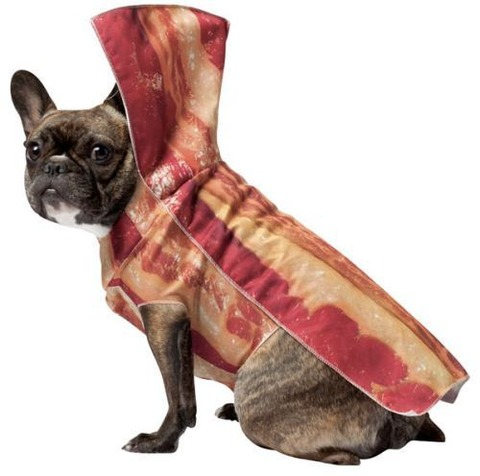 fashion-products-bacon-41