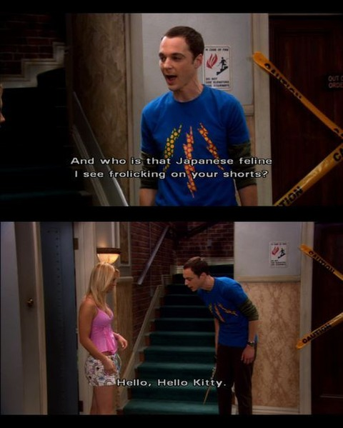 big-bang-theory-19