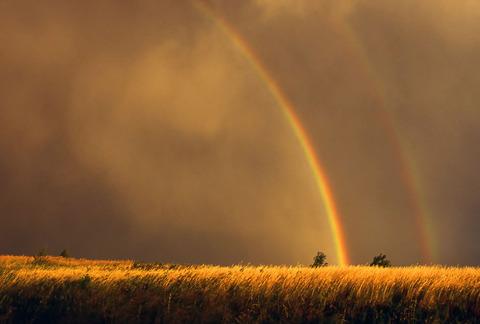 rainbows11