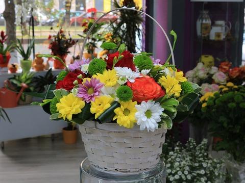flower-3045144_1920