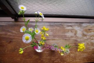 シオン花瓶