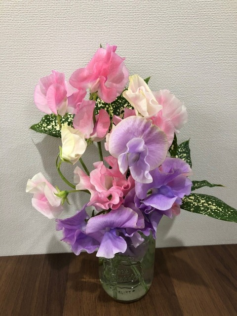 福田さんブログ写真
