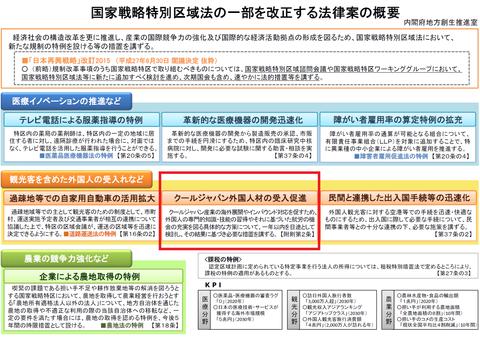 国家戦略特別区域法の一部を改正する法律案の概要