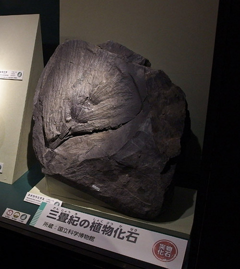 sanjouki