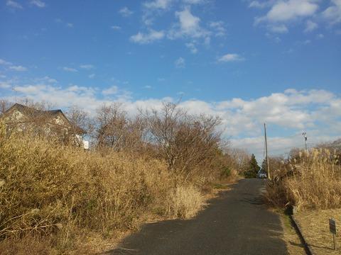 栗山川沿いの分譲地 (14)