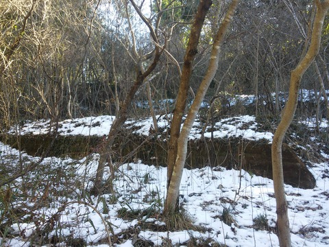 小野の放棄住宅地 (16)