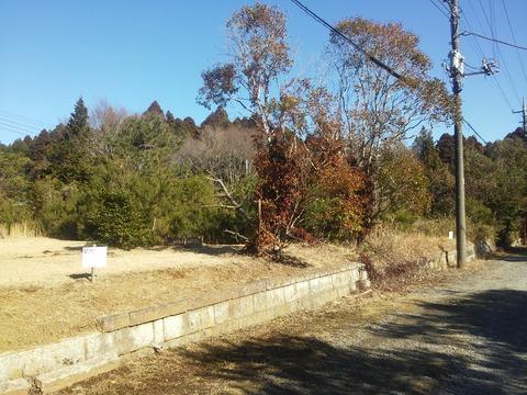 麻生新田 山林の分譲地 (24)