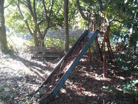 臼作の放棄住宅地 (35)