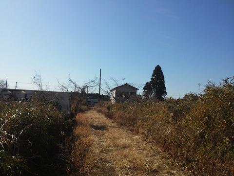 光が丘タウン (28)
