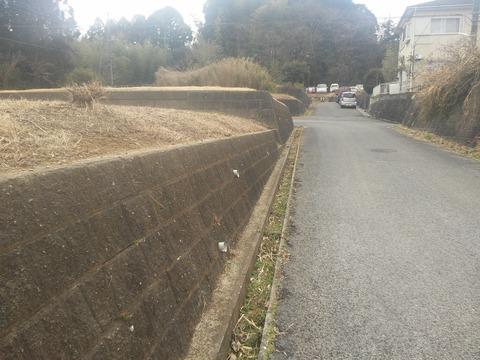 津富浦の北向き分譲地 (9)
