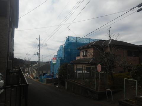 芙蓉邸街 (11)