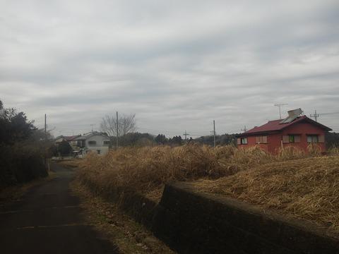 津富浦の北向き分譲地 (17)