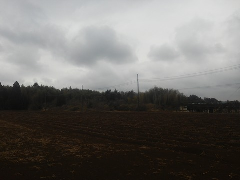 青山の放棄分譲地 (18)