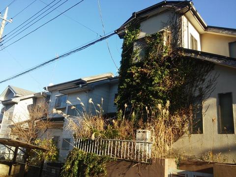 にっぽり団地 (22)