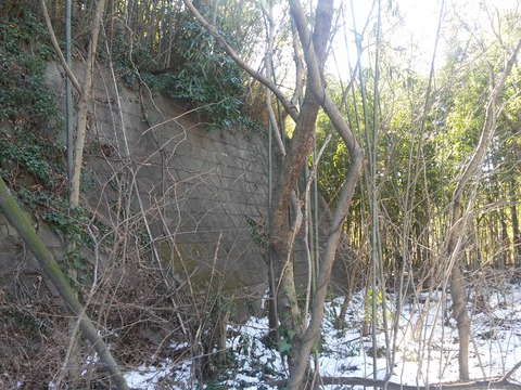 小野の放棄住宅地 (24)