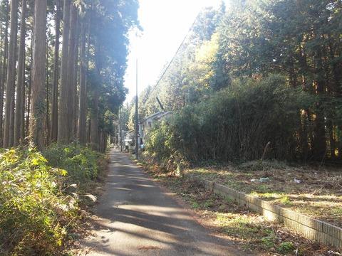 山武市埴谷 雑木林の分譲地 (3)