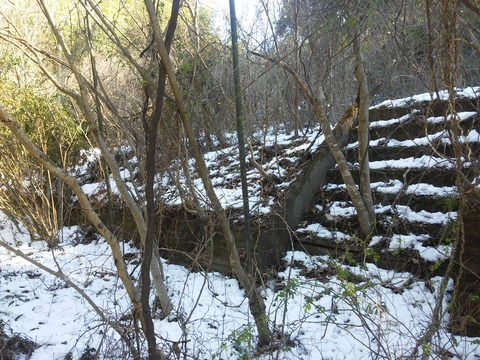 小野の放棄住宅地 (28)