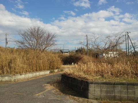 栗山川沿いの分譲地 (8)