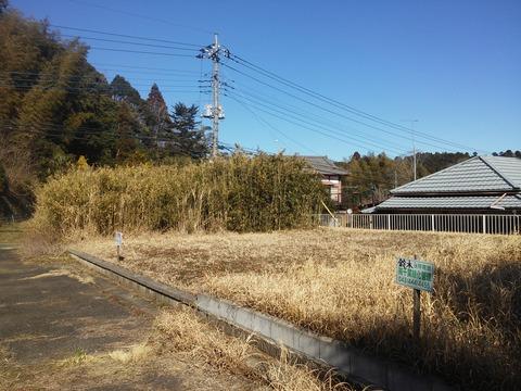 埴谷 農村の分譲地 (8)