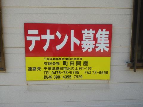 山田の放棄住宅地 (9)
