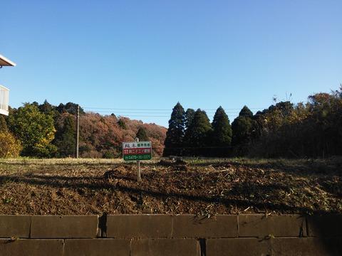 にっぽり団地 (10)