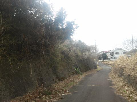 津富浦の北向き分譲地 (15)