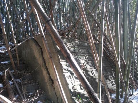 小野の放棄住宅地 (34)