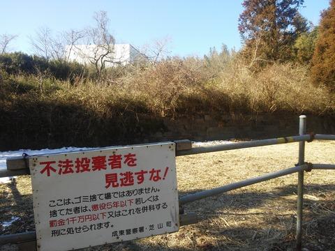 山田の放棄住宅地 (6)