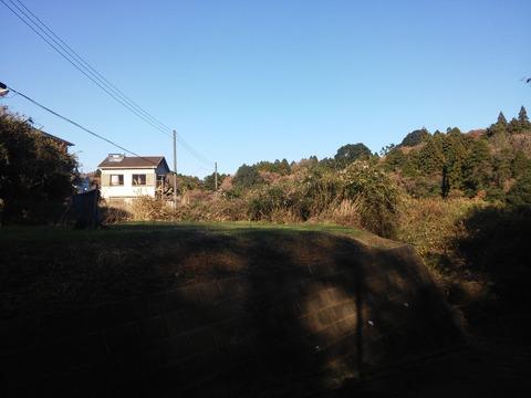 にっぽり団地 (8)