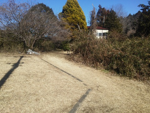 麻生新田 山林の分譲地 (5)