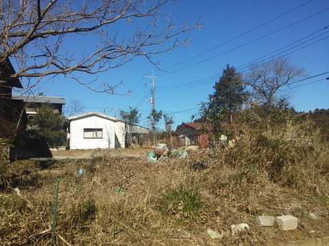 麻生新田 山林の分譲地 (38)