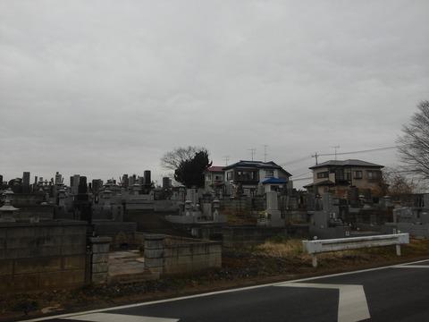 山田台売れ残り (8)