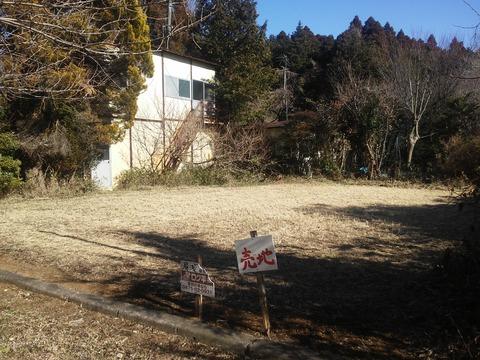 麻生新田 山林の分譲地 (6)