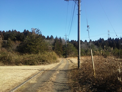 麻生新田 山林の分譲地 (4)