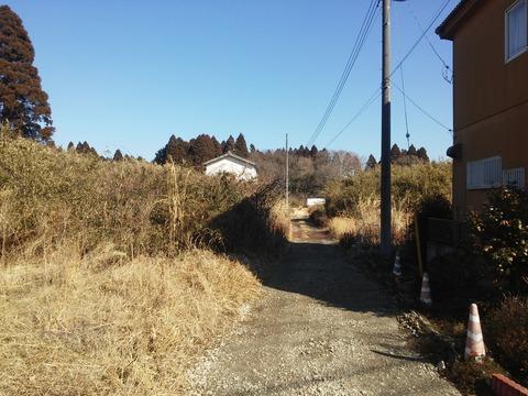 光が丘タウン (16)