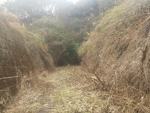 津富浦の北向き分譲地 (18)