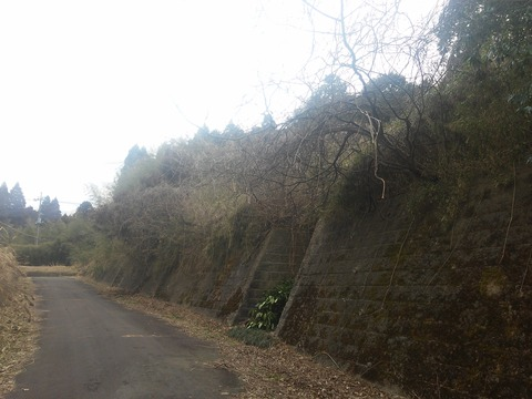 津富浦の北向き分譲地 (14)